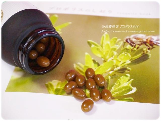 山田養蜂場プロポリス300-2