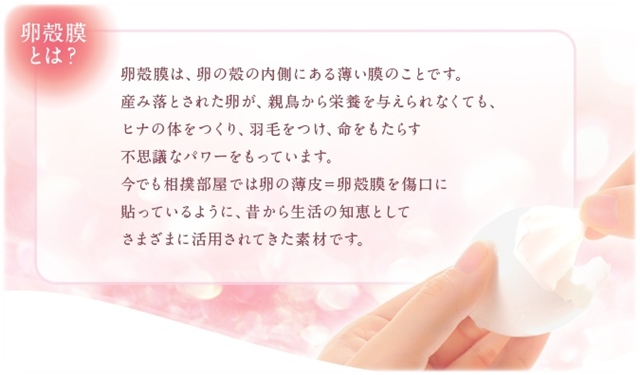 rankakumaku2